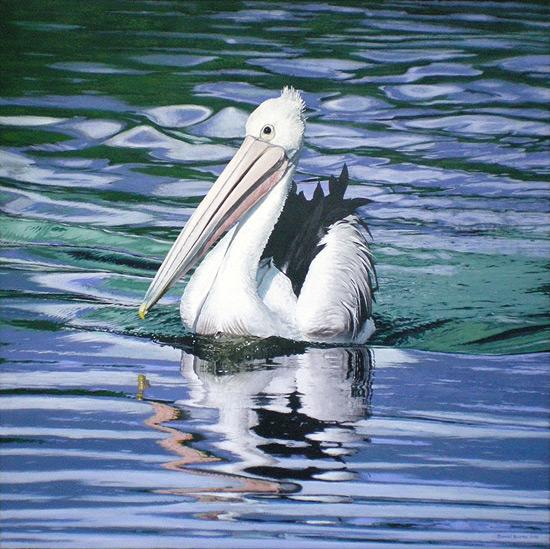 Pelican, Acrylic on canvas.