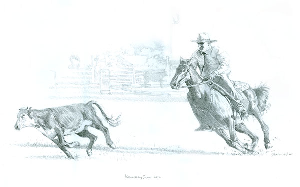 Campdraft at the Kempsey Show. Pencil on paper.